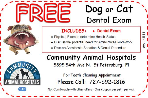 Free Dental Exam Coupon
